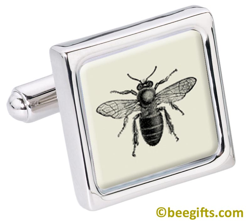 2901 Bee (2) CUFFLINKS from Fox and Chave copy.jpg SINGLE